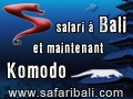 Safari Bali - Séjour plongée itinérant à Bali et croisière Indonésie