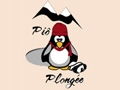 Pio Plongée sous glace