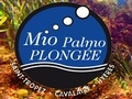 Mio Palmo Plongée - Centre de plongée Cavalaire